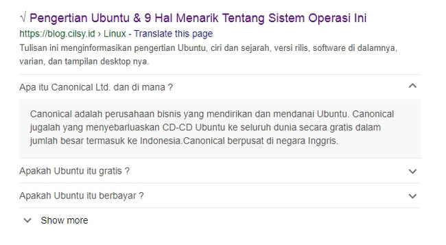 Tampilan schema FAQ di mesin pencari