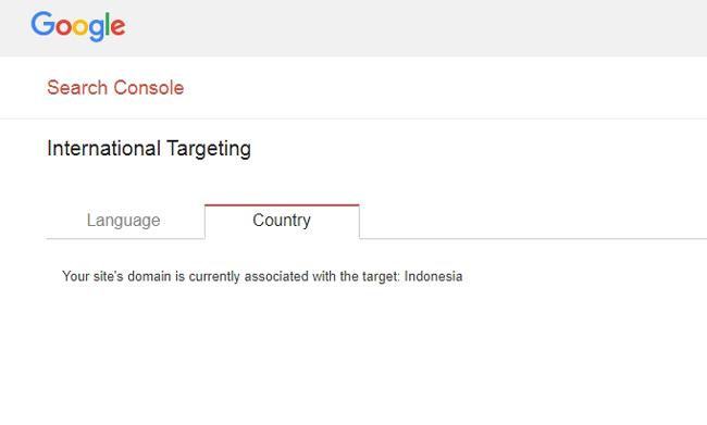 Pengaturan target negara pengunjung blog