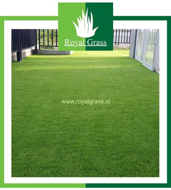 Rumput sintetis untuk rooftop
